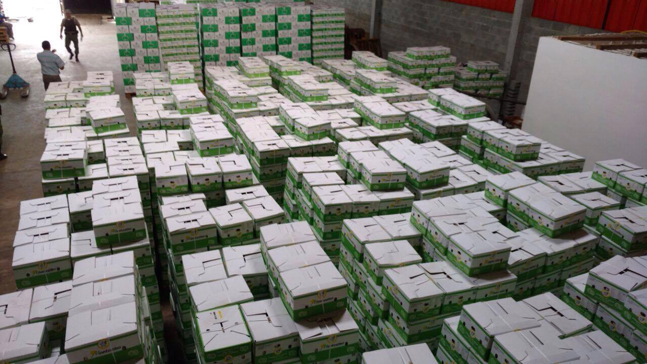 Ação da Sefaz apreende 126 mil quilos de alho em Suape